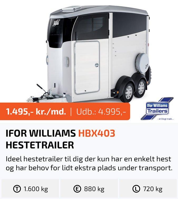 Ifor Williams HB610 hestetrailer - TrailerLeasing.dk - Privatleasing